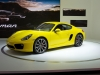 2013-porsche-cayman-yellow-2012-los-angeles-auto-show-by-stevelyon_03